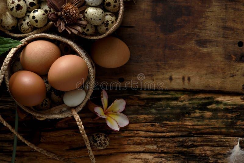 El estudio tiró de los huevos de codornices en un fondo de madera del vintage foto de archivo libre de regalías