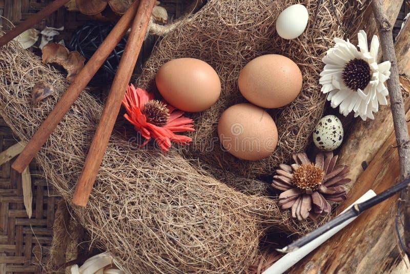 El estudio tiró de los huevos de codornices en un fondo de madera del vintage fotos de archivo
