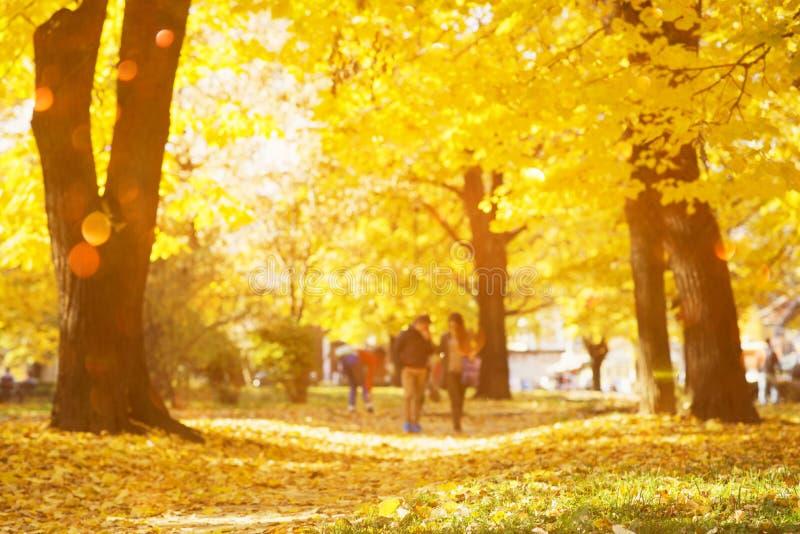 El extracto del otoño empañó el fondo con las luces mágicas foto de archivo