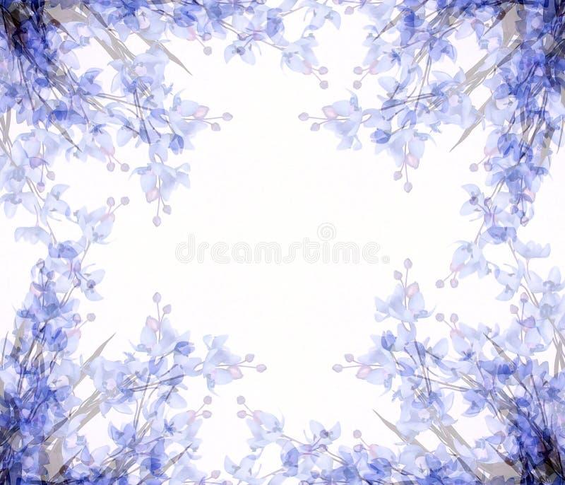 El extracto florece el marco 2 de la foto ilustración del vector