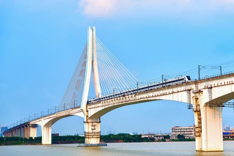 El ferrocarril de alta velocidad permanecía el puente de cable fotografía de archivo libre de regalías
