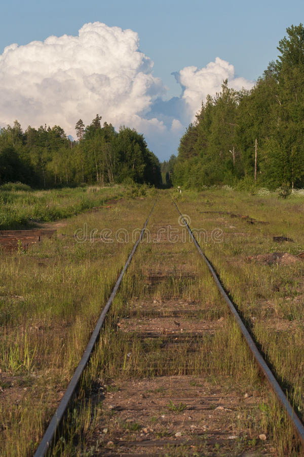 El ferrocarril entra la distancia en el bosque fotos de archivo