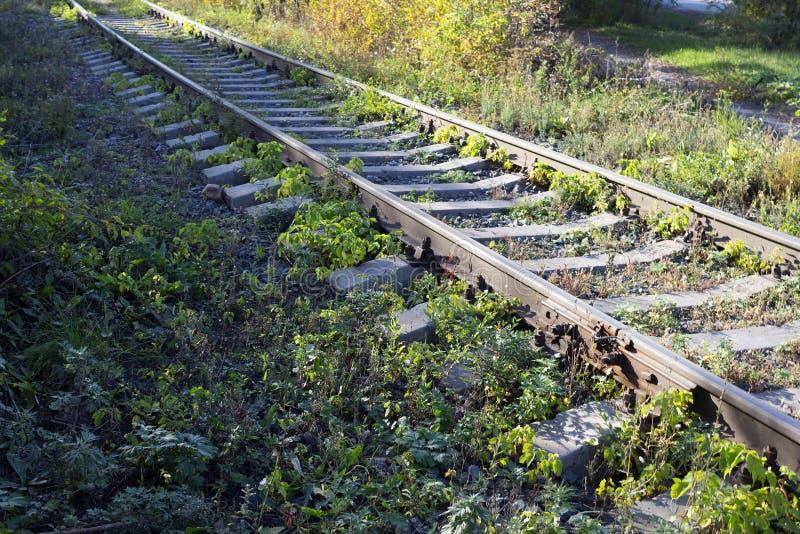 El ferrocarril entre hierba imágenes de archivo libres de regalías
