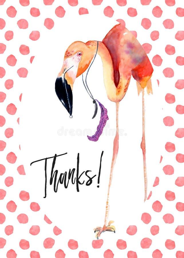 El flamenco rosado de la acuarela le agradece cardar ilustración del vector