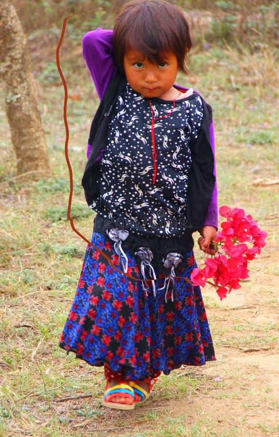 El florista bhután fotografía de archivo