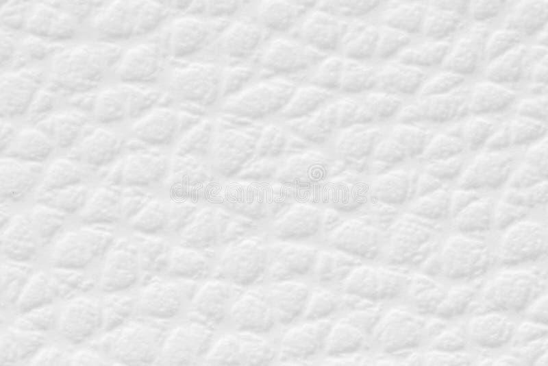 El fondo blanco del extracto del modelo de la textura del color puede ser uso para el fondo de la tarjeta de la estación del invi fotos de archivo