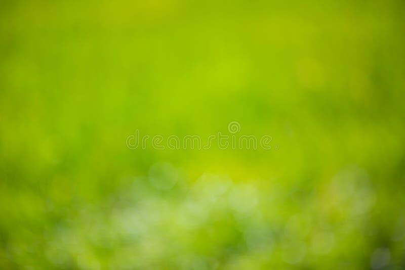 El fondo borroso Defocused del verde de la naturaleza con el bokeh suave se enciende Fondo natural abstracto de la textura foto de archivo