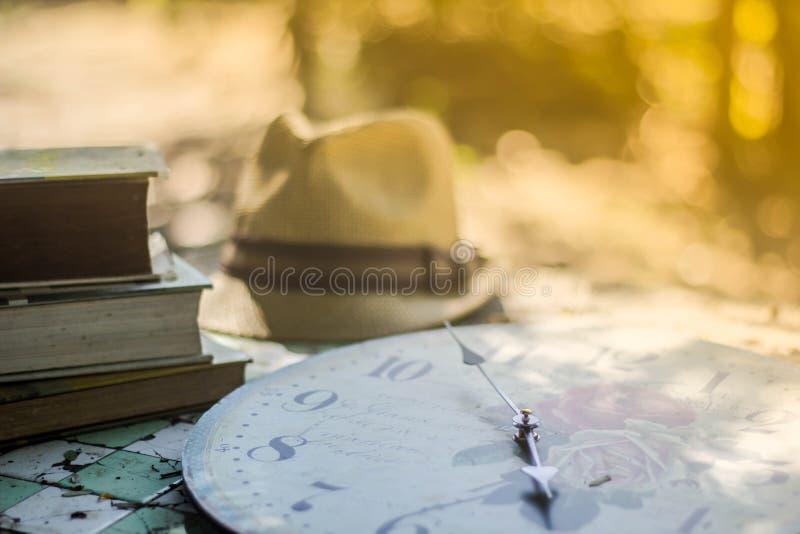 El fondo borroso, flor ahueca el café en la cafetería, parte posterior del sombrero fotos de archivo