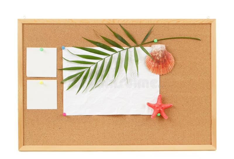 El fondo con el espacio en blanco arrugó el papel, conchas marinas, licencia de la palma y la concha marina fotos de archivo libres de regalías