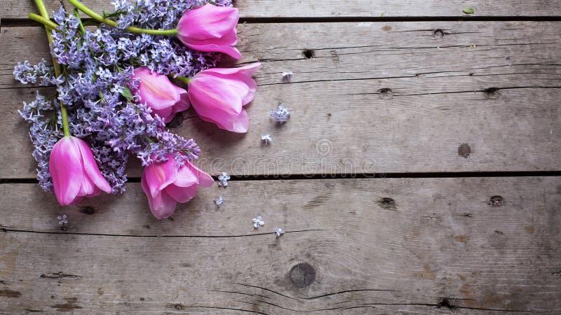 El fondo con la lila aromática fresca y los tulipanes rosados florece encendido foto de archivo