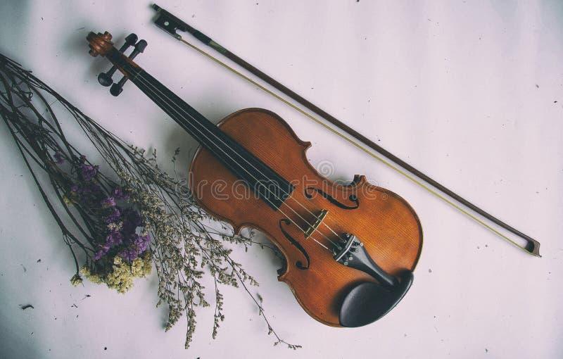 El fondo del diseño del arte abstracto del violín y del arco clásicos puso al lado de ramo secado de la flor, en fondo imagen de archivo libre de regalías