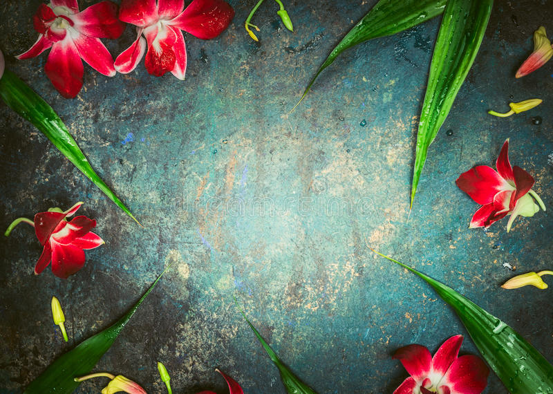 El fondo del vintage con la orquídea roja florece, visión superior foto de archivo libre de regalías