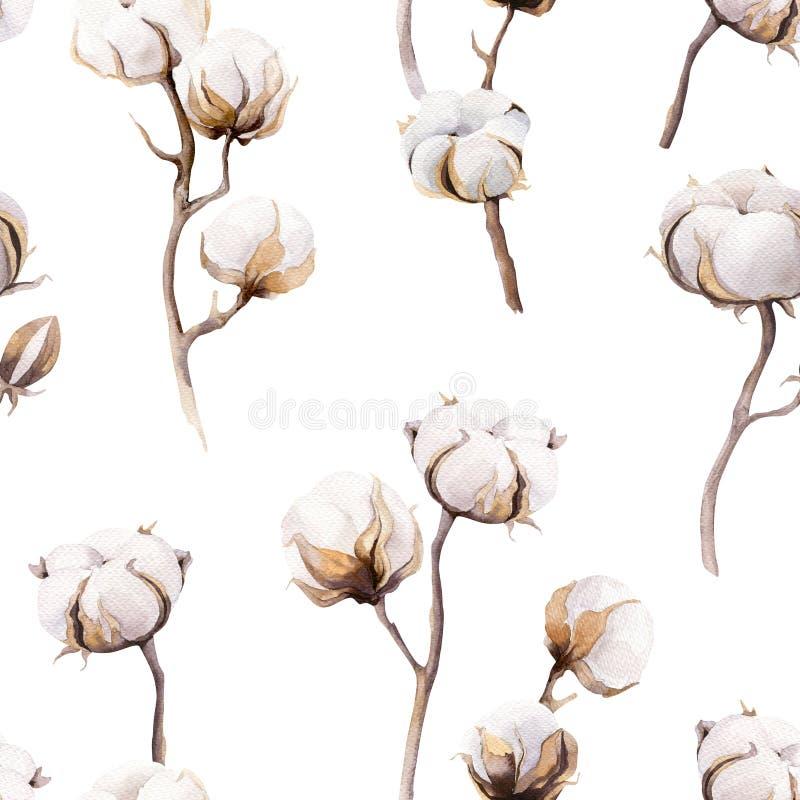 El fondo del vintage de la acuarela con las ramitas y el algodón florece boho stock de ilustración