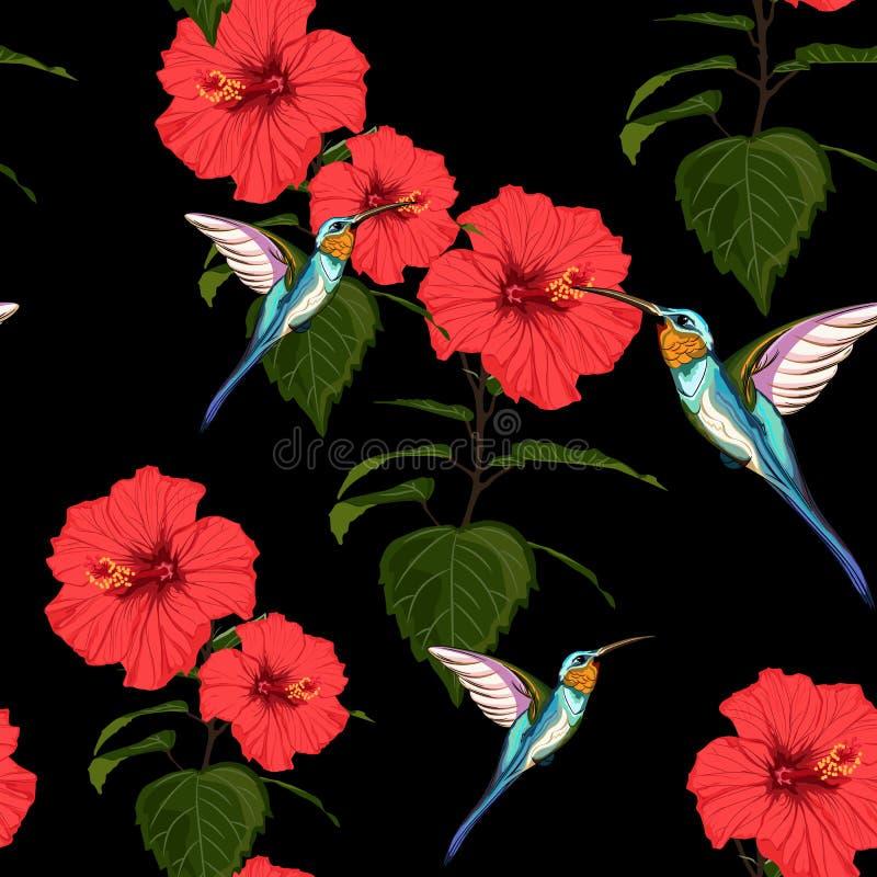 El fondo floral del modelo del verano del vector inconsútil hermoso con el colibrí y el hibisco rojo florece libre illustration