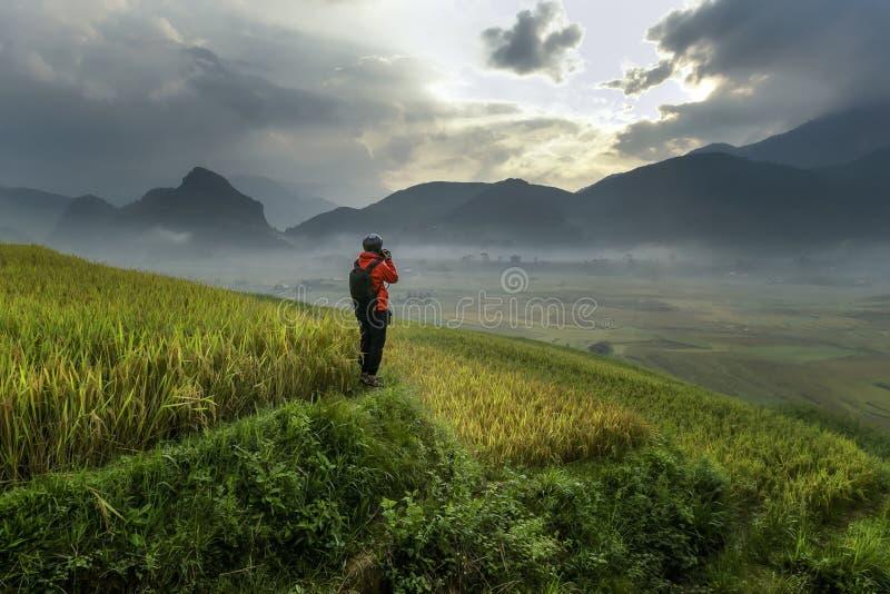 El fotógrafo colocaba terrazas vietnamitas del arroz de la proyección de imagen foto de archivo libre de regalías