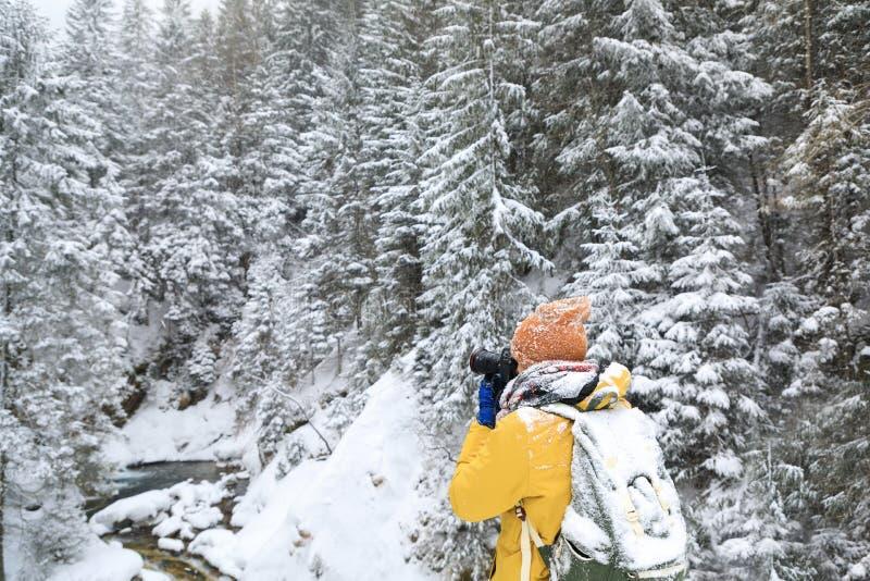 El fotógrafo en bosque del invierno imagen de archivo libre de regalías