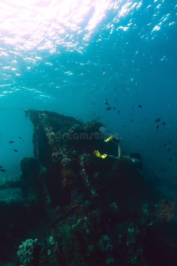El freediver de la muchacha explora la nave vieja en el mar del Caribe fotografía de archivo libre de regalías