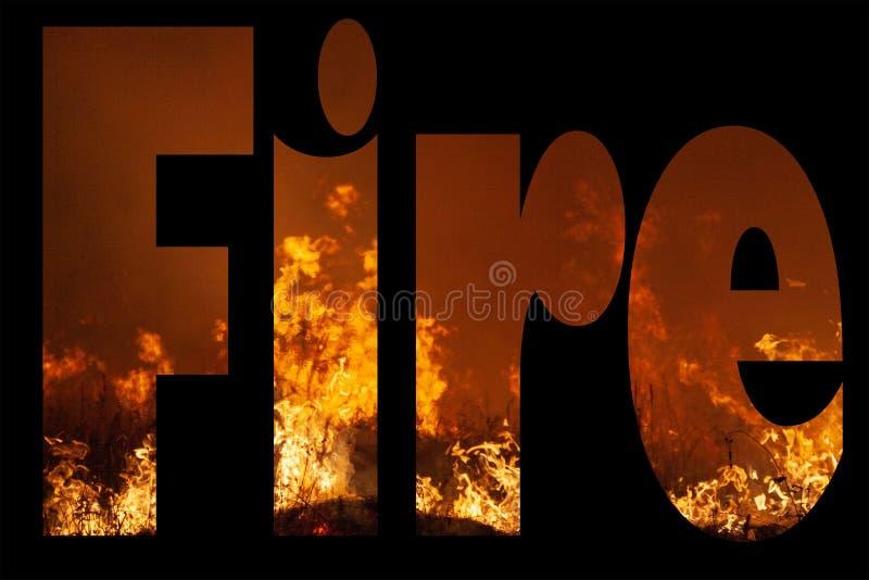 El fuego de la palabra en Gill Sans Ultra Bold Font completó de cierre extremo para arriba de un fuego de la hierba salvaje en fo foto de archivo