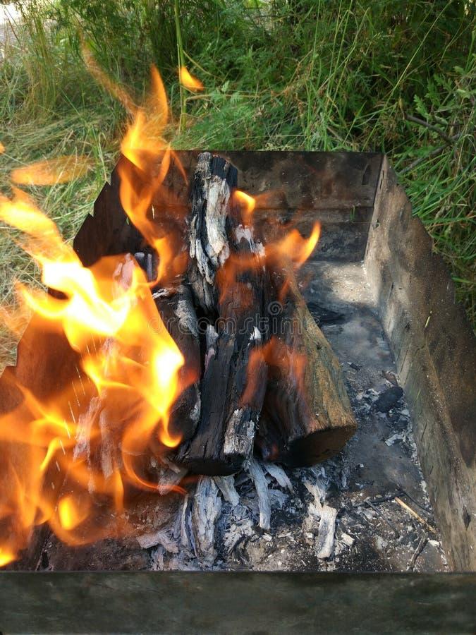 El fuego en la parrilla para los kebabs encendi? por el saxaul imagen de archivo libre de regalías