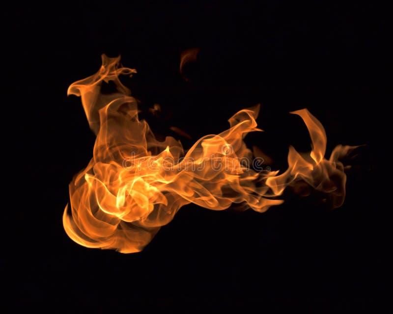 El fuego flamea la colección fotos de archivo libres de regalías