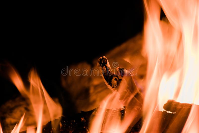 El fuego que acampa caliente cuece imagen de archivo libre de regalías