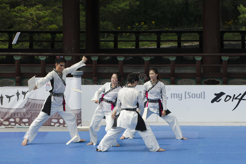 Download El Funcionamiento Del Arte Marcial Y El Evento Coreanos Tradicionales De La Experiencia Muestran Imagen de archivo editorial - Imagen de retroceso, coreano: 41919724