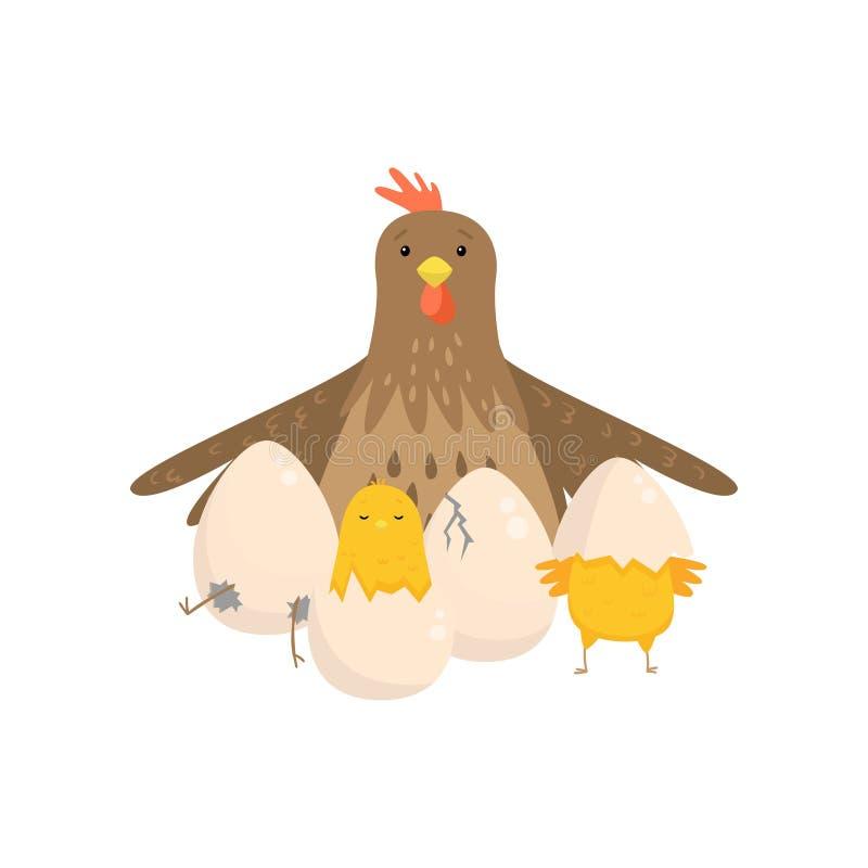 El gallo con varios polluelos amarillos tramó de los huevos aislados en el fondo blanco ilustración del vector