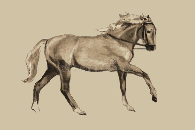 El galope del caballo (modelo del vintage) stock de ilustración