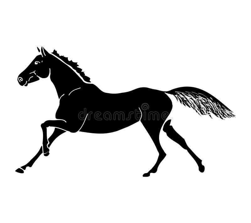 El galope del caballo (mono) libre illustration