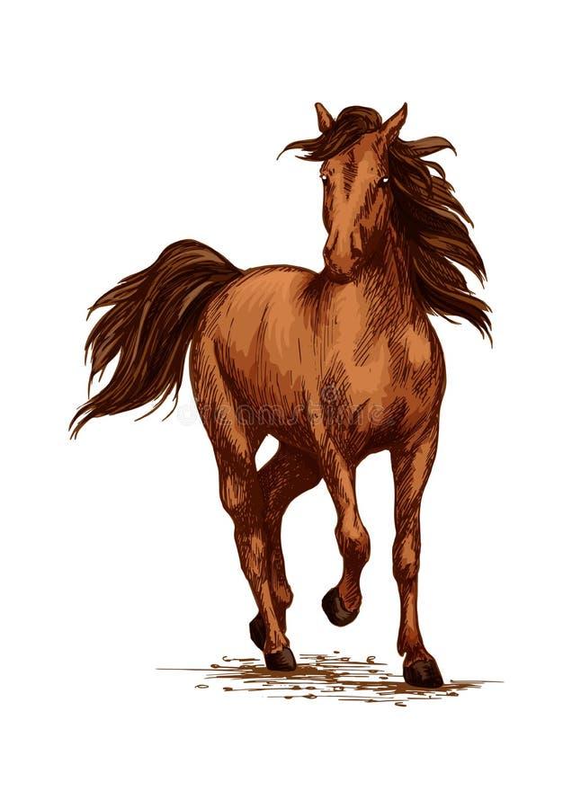 El galope del funcionamiento del caballo de Brown en las razas vector bosquejo libre illustration