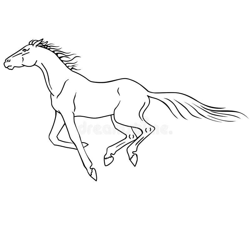 El galope galopante del caballo Dibujo lineal Para colorear Carrera de caballos, corriendo stock de ilustración