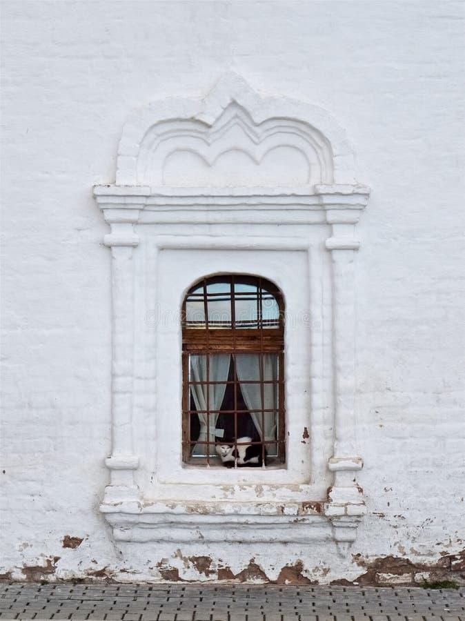 El gato blanco y negro se sienta en la ventana de un edificio viejo blanco foto de archivo libre de regalías