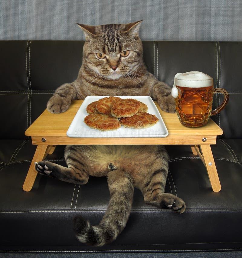 El gato come las chuletas fritas de una bandeja 2 de la cama fotos de archivo libres de regalías