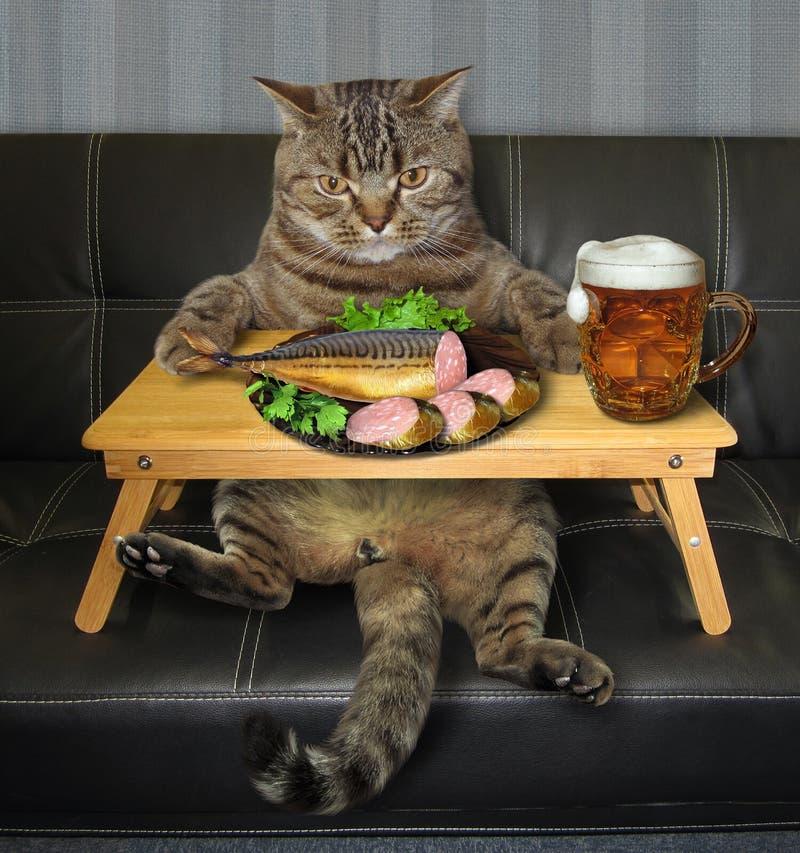 El gato come pescados rellenos de una bandeja 2 de la cama foto de archivo libre de regalías