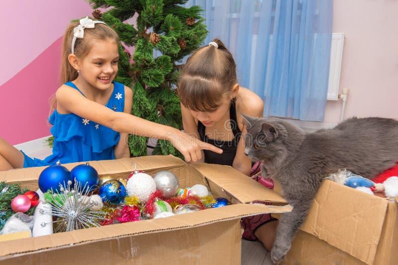 El gato de casa vino mirar las decoraciones del árbol de navidad en la caja, la muchacha muestra un finger en el gato imagen de archivo