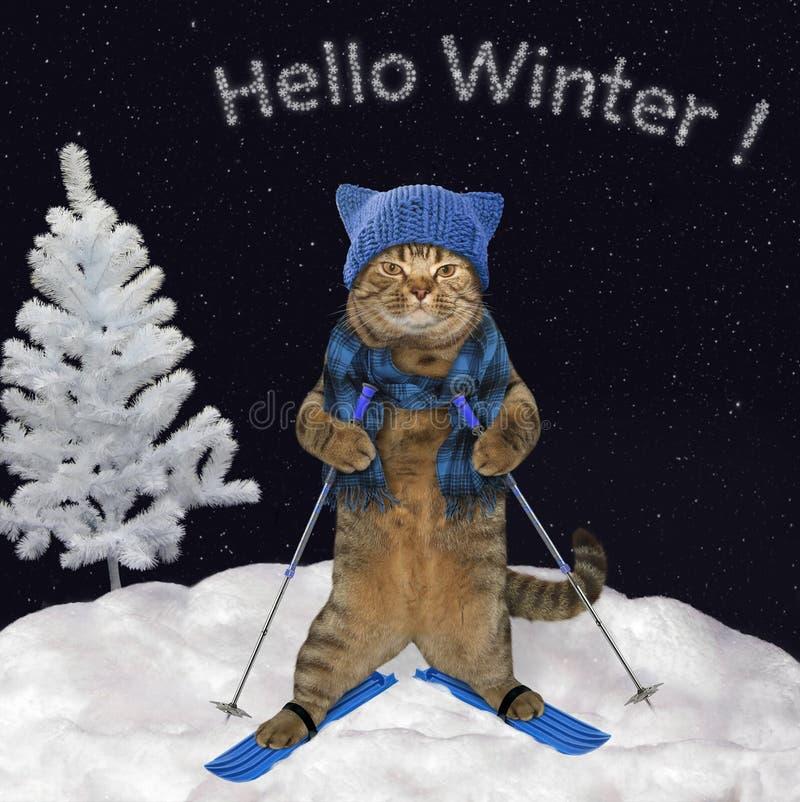 El gato está esquiando cuesta abajo imagenes de archivo
