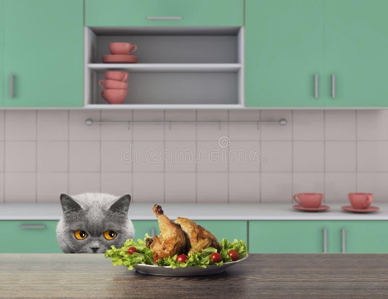 El gato lindo va a comer alguno para chiken de la tabla 3d rinden foto de archivo