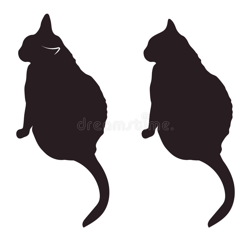 El gato negro siluetea el ejemplo del vector ilustración del vector