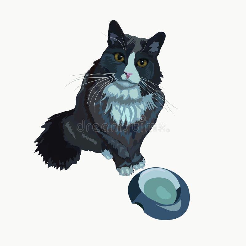 El gato pide el ejemplo del vector de la comida libre illustration