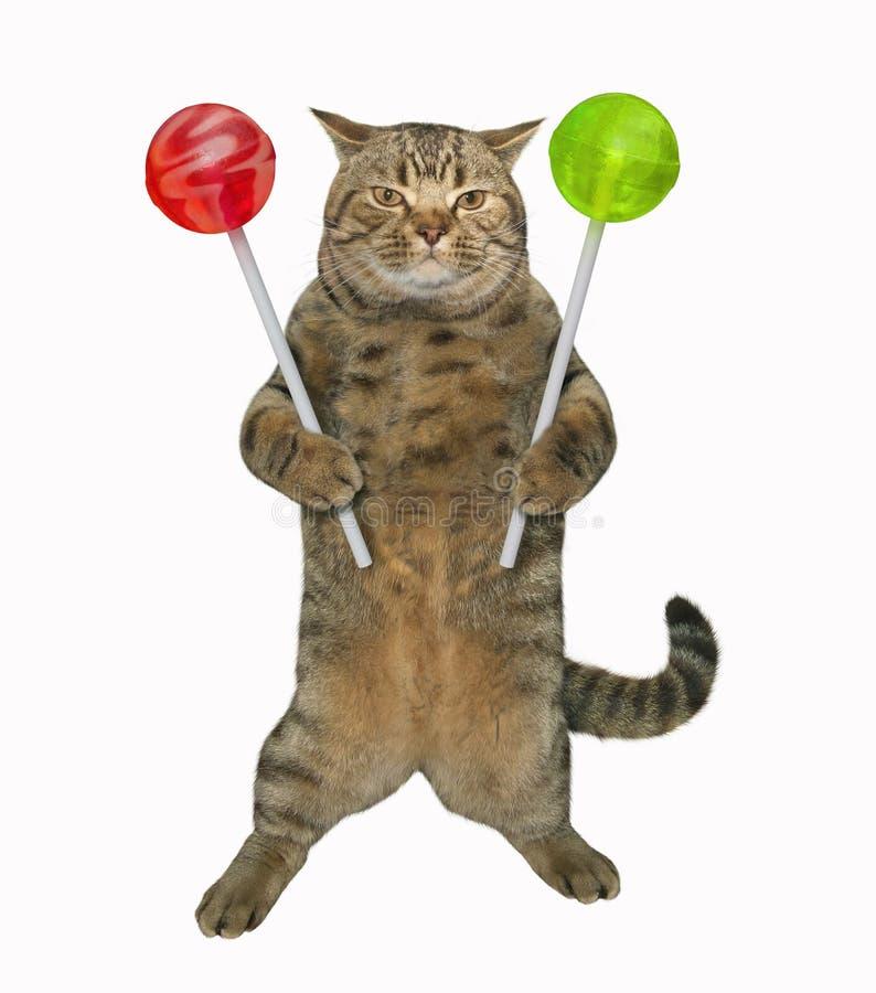 El gato sostiene las piruletas del color libre illustration