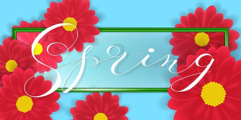 El Gerbera o Daisy Flowers en el fondo y la primavera blancos redacta las letras en frontera verde Ilustración del vector stock de ilustración
