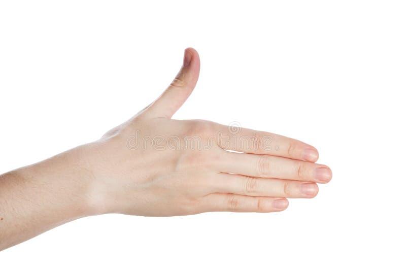 El gesto de la dirección de la demostración de la mano de la mujer, mano abierta isokated en un fondo blanco fotografía de archivo