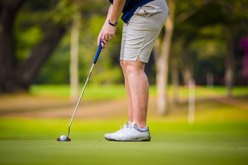 El golfista est? empujando la pelota de golf del club de golf de las cajas de la camiseta en el campo de golf en juego de la comp fotografía de archivo