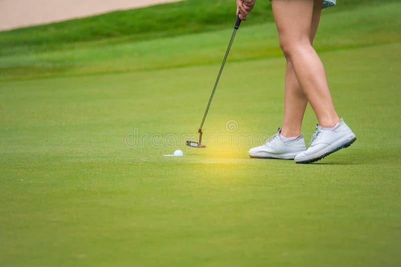 El golfista est? empujando la pelota de golf del club de golf de las cajas de la camiseta en el campo de golf en juego de la comp imagenes de archivo