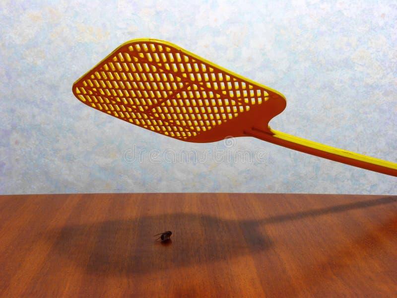 El golpear con fuerza de la mosca imagen de archivo