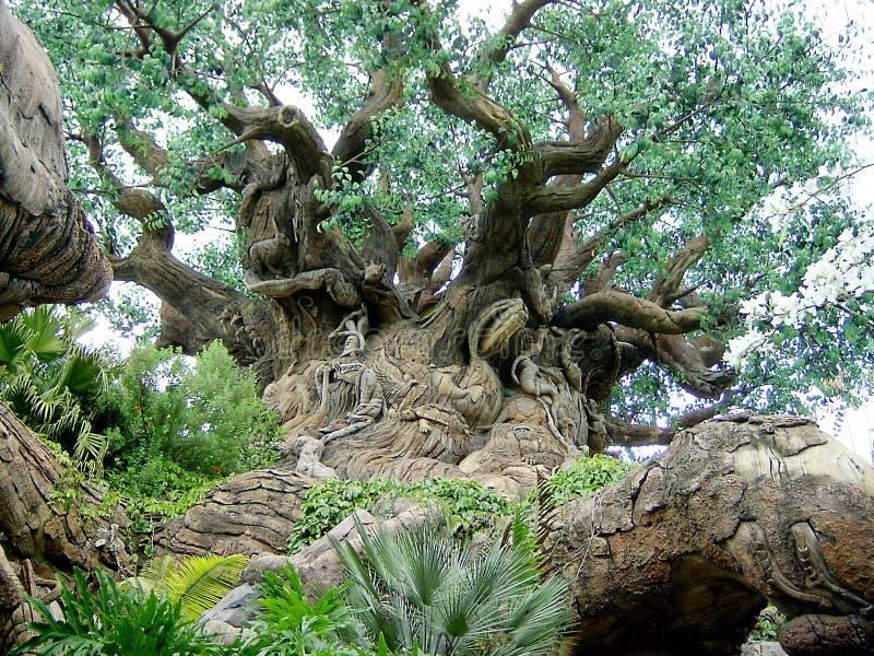 El Gran árbol Fotografía de archivo