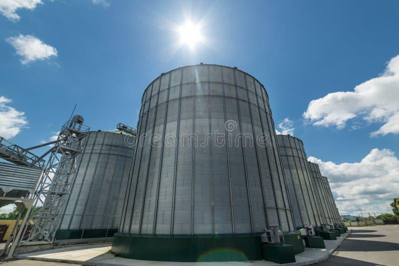 El granero moderno Silos del alto metal para el almacenamiento del trigo y de la cebada Día soleado, el cielo azul fotos de archivo