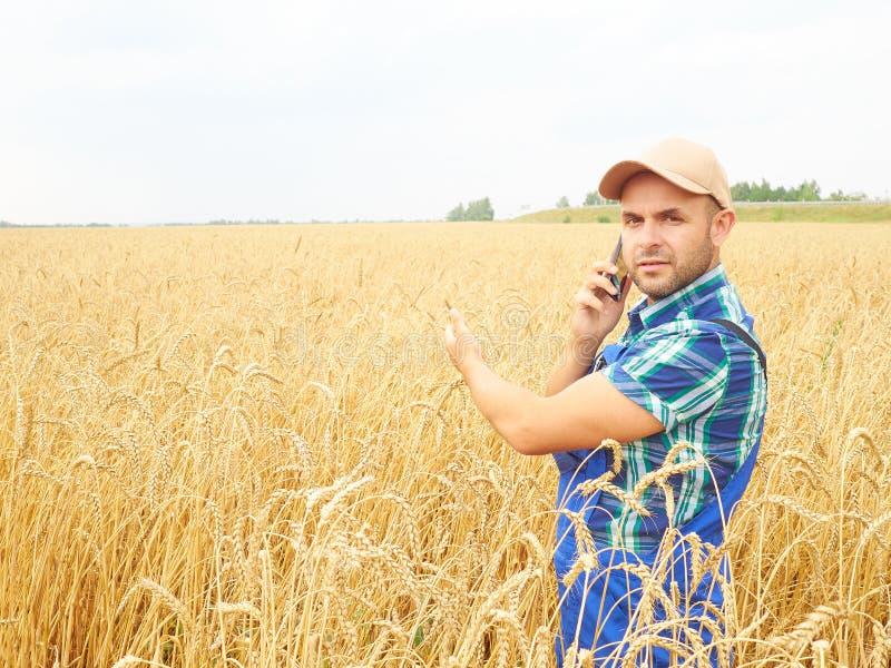 El granjero en una camisa de tela escocesa controló su campo El hablar en el pho foto de archivo libre de regalías