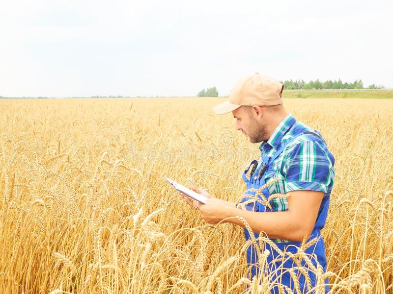 El granjero en una camisa de tela escocesa controló sus notas del campo y de la escritura imagen de archivo