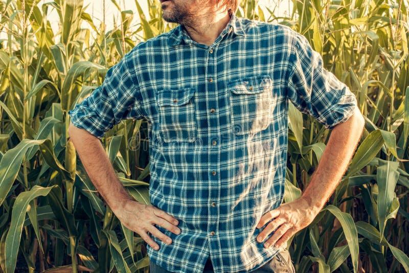 El granjero está listo para la acción, presentando con las manos en caderas imagen de archivo libre de regalías